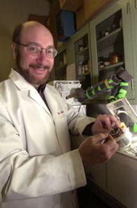 Dr. Doug Borchman