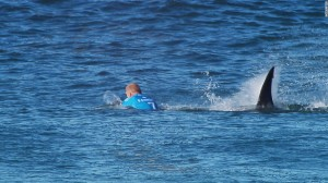 Mick Fanning being attacked by a shark